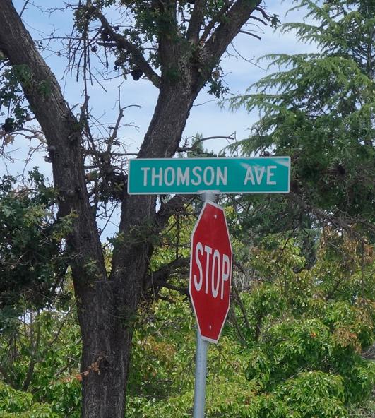 ThomsonSignweb