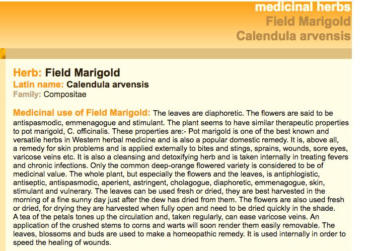 calendulamedicinal