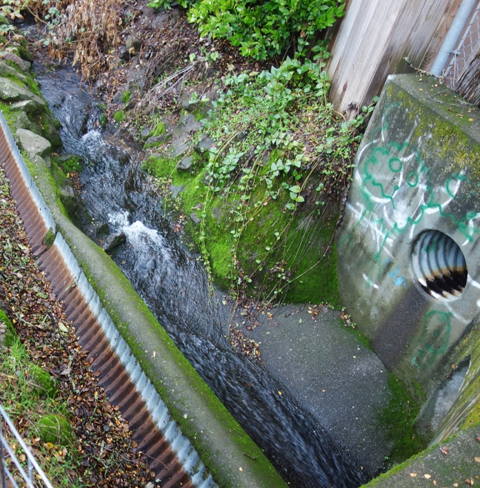 waterflowing copy